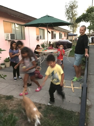 chasingdogs